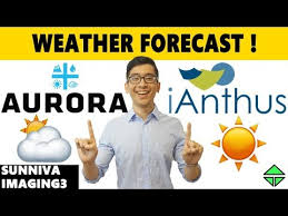 Aurora Cannabis Ianthus Forecast Sunniva Imaging3 Stock
