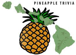 🍍 14 fun facts about Hawaiian Pineapples (origin, history, pizza ...