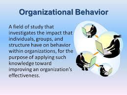 What Is Organizational Behavior What Is Organizational Behavior Ppt Video Online Download