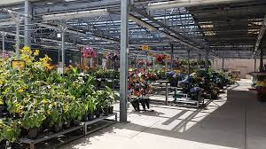 fred meyer garden center. Delighful Fred Photo Of Fred Meyer One Stop Shopping  Clackamas OR United States  BEAUTIFUL For Garden Center T