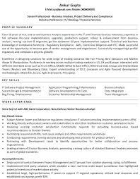 Business Systems Analyst Resume Sample Custom Senior System Analyst Resume Example Sample Template Business