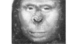 Russian ladies russian ape woman