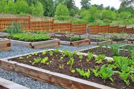Small Picture Garden Plot Ideas Garden Design Ideas