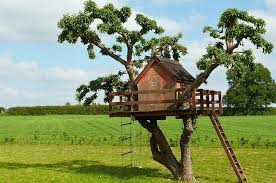 how to build a treehouse for your kids