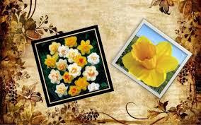 greek flower myths  hyacinthus 6