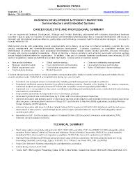 Science Resume Summary Business Director Resume Researcher Research