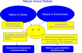 nature vs nurture essays nature vs nurture essay