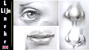 drawing the realistic eye nose and mouth step by step for beginners you