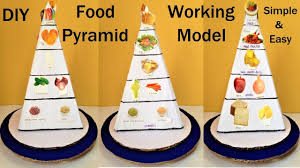 Food Pyramid Project Food Pyramid Working Model For School Science Exhibition