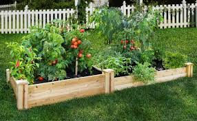 Small Picture backyard 19 Backyard Vegetable Garden Design Ideas Backyard