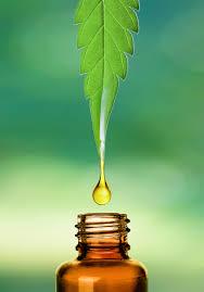 Hasil gambar untuk CBD oil
