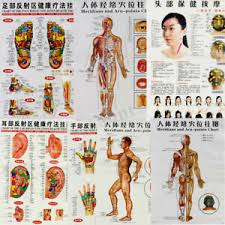 Acupuncture Facelift Points Chart Details About 7pc Set English Acupuncture Meridian Acupressure Points Posters Chart Wall Map