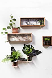 artificial plants for office decor. Decorating:Executive Office Artificial Plants Indoor No Light For Decorating Super Pictures Small Plant Ideas Decor F