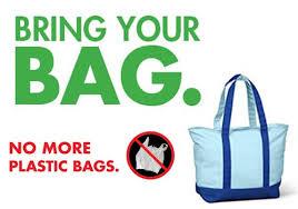 argument essay about plastic bags < homework service argument essay about plastic bags