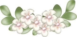 Resultat d'imatges de cenefas de fondo blanco con flores