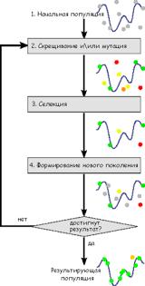 Контрольная работа Генетический алгоритм Схема работы генетического алгоритма