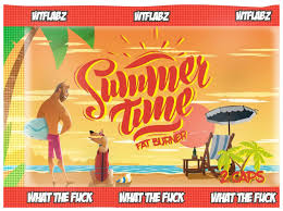 Жиросжигатель WTF Labz <b>Summer Time</b>, 2 капсулы - отзывы ...