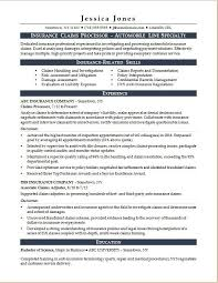 Data Processor Resume Awesome Insurance Claims Processor Resume Sample Monster