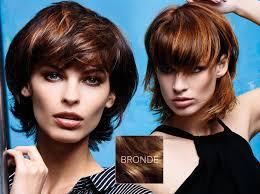07 Colors The Short Hair Fall 2015 Winter 2016 Bronde Hair