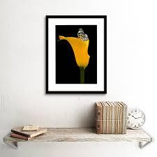 yellow flower black white erfly photo framed art