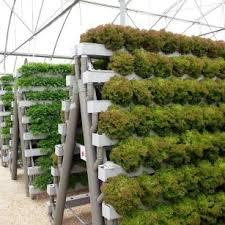 how to build a hydroponic garden. best innovative diy hydroponic gardening system ideas (19) how to build a garden