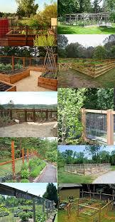 fence for vegetable garden