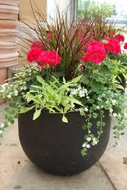 Best 25 Cinder Block Garden Ideas On Pinterest  Diy Planters Container Garden Ideas Photos