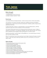 Front End Developer Resume Fascinating Front End Developer Resume Sample Web Developer Resume Web Developer
