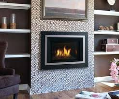 gas inserts for fireplace fireplaces awesome gas fireplace insert natural throughout inserts for decor gas fireplace