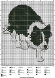 Border Collie Knitting Chart Image Result For Border Collie Knitting Chart Border