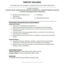 Carpenter Resume Template Inspiration Journeyman Carpenter Resume Carpenter Resume Objective School