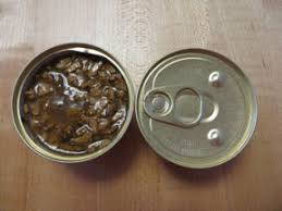 Canned Food Transition For Cats Addicted To Dry Food
