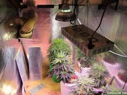 grow room 101 open air setup design configuration ventilation