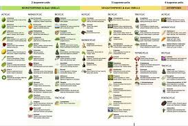 Terpene Chart Yahoo Image Search Results The More You