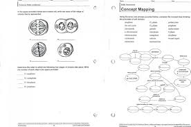 venn diagram for mitosis and meiosis mitosis vs meiosis venn diagram mitosis vs meiosis worksheet key