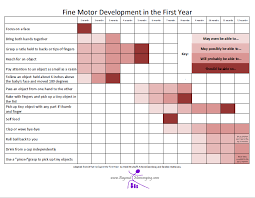 Motor Development In The First Year Beyond Mommying