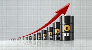 Image result for crude oil images