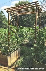 diy garden arbor bamboo trellis diy wood arbor plans