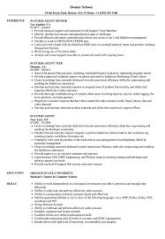 Success Agent Resume Samples Velvet Jobs