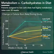 Low Carb Diets Increase Your Metabolism