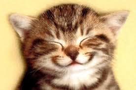 Journée du sourire  Images?q=tbn:ANd9GcTEpeKmgEqwBk-cl9fnP6tEAW8WRMjCFnnr1lAfCV0GNVe17cgQZQ