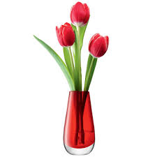 lsa flower colour bud vase red red candy
