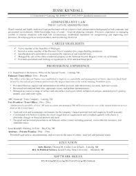 Sample Law School Resume Mesmerizing Employee Benefits Attorney Sample Resume Simple Resume Examples