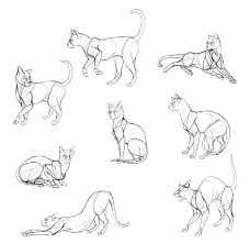 cat drawing step by step.  Cat Drawcatsdone3 For Cat Drawing Step By T