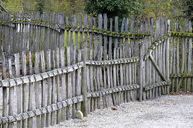 creating a fence will help you get rid of the squirrels for a long time you may use netting to protect your plants from them or create a fence over the