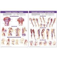 Trigger Point Chart Set Paper Ac 05