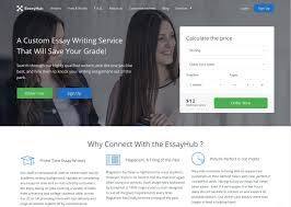 custom essay writing essayhub