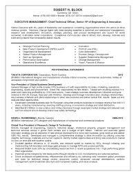 Director Of Engineering Resume Stunning Director Of Engineering Resume With Additional Vp Of 3