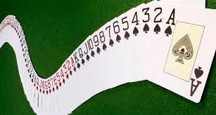 View the top 5 playing cards of 2021. Poker Cards Games Playing Cards Names Games