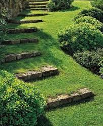 garden grass stone png